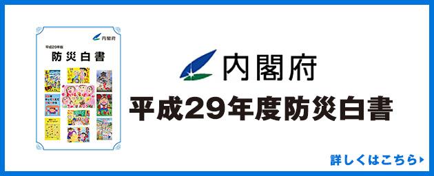 平成29年度防災白書