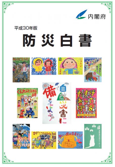 平成30年版防災白書の公表(内閣府)