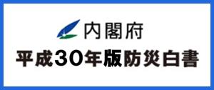 平成30年版防災白書